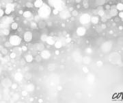 Christmas2013_7